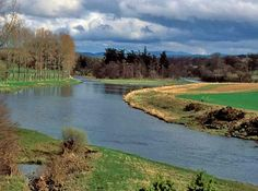 River in the Scottish Borders council area of southeastern Scotland, flowing eastward for 97 miles (156 km) and forming for 17 miles (27 km) the border with England. For the last...