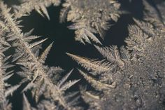 How to Frost Glass With Epsom Salt   I wonder if adding food coloring would stain the window?