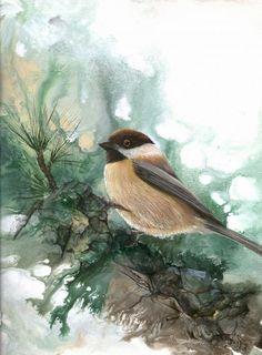 Chickadee Painting  - Chickadee Fine Art Print