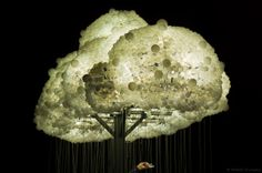 Cloud – Caitlind Brown & Wayne Garrett Prague Signal Light Festival 2013