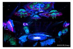 Large floral roof throughout venue - similar to Le Reve in Vegas