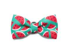 """ZEE DOG """"LOLA"""" BOW TIE FOR CATS & DOGS"""