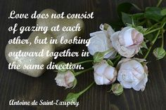 Saint-Exupéry's lovely marriage quote makes the perfect starting point for toasts between the bride and groom. Magic Quotes, Wedding Quote, Find Image, Groom, Marriage, Bride, How To Make, Magical Quotes, Valentines Day Weddings