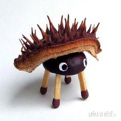 Tvoření z kaštanů, zvířátka - ježek