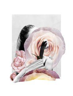 FLOWERS SERIE / COLOR by Rocio Montoya, via Behance