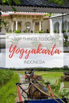 Don't miss these 8 incredible things to do in Yogyakarta, Indonesia. From temples to food and more, here's the perfect little travel guide. #indonesiatravel #yogyakarta #traveltips