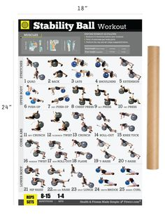 "An exercise ball, also called stability balls, Swiss balls, fitness or yoga balls—is a fantastic fitness tool that allows a whole body workout around the ball.Our stability ball exercise poster will show you 25 essential exercises to work your abs, chest, arms, back, shoulders, and legs.You'll gain core strength, develop your flexibility, balance and most importantly you'll build a better and more fit body with our ""Exercise Ball Poster"".Research shows when perform basic bodyweight moves…"