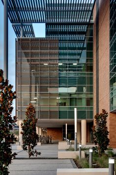 San Antonio Military Medical Hospital by RTKL relied heavily on custom batons of terracotta  to cover the mostly glass walls and provide overhead protection from the heat,especially for the new burn unit in the expanded hospital.