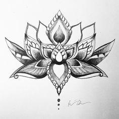 gorgeous lotus flower