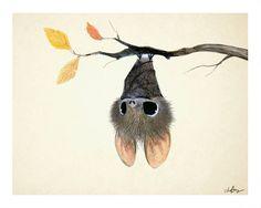 Those eyes o.o art cute animal illustration, art, october art. Art And Illustration, Illustration Mignonne, Cute Animal Illustration, Animal Illustrations, Illustrations Posters, October Art, Art Mignon, Cute Bat, Cute Drawings