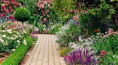 Tips for a Perfect English Garden