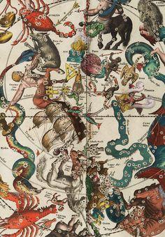 The Harmonia Macrocosmica of Andreas Cellarius. Detail.
