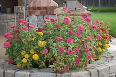 Would love to make a half circle flowerbed behind and around my brick columned mailbox.