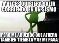 Memes Rana Rene