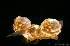 Gorgeous paper flowers lit by battery operated LED lights. See our battery operated LEDs here: http://www.lightsforalloccasions.com/c-181-led-battery-operated-string-lights.aspx