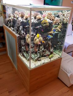 The Drop-Off Reef Aquarium of Philippe Grosjean <--- So awesome
