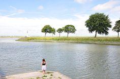 20 choses à faire lors d'un week-end ou séjour en baie de Somme, que faire à Saint-Valery sur Somme, au Crotoy, voir les phoques, adresses, conseils...