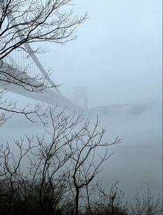 Fort Lee, Washington Heights, Hudson River, George Washington Bridge, New Jersey, New York City, Outdoor, Outdoors, New York