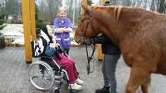 Hevoset ilahduttivat ja koskettivat sydämeen saakka