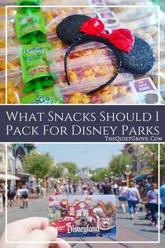 What Snacks Should I Pack For Disney Parks