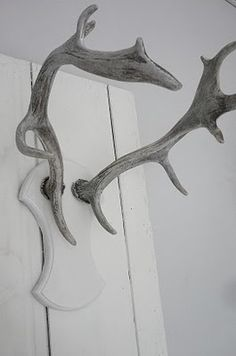 I'd have no shame in hanging antlers in my apartment. Note: wood antlers need only apply (kill trees, not bambi's).