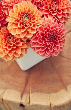 Orange dahlia arrnagement in a white cube vase by  rountree flowers and ro agents photo. #dahlia #orange #flowerarrangement