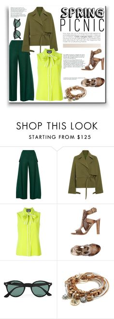 """Spring picnic"" by norairh ❤ liked on Polyvore featuring Marni, Rosie Assoulin, Boutique Moschino, Stuart Weitzman, Ray-Ban and Lizzy James"