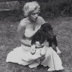 "loutigergirl99:  ""Marilyn and Hugo  """