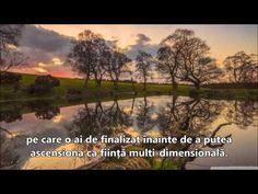 ACCEPTAREA ESTE SCOPUL VIEȚII - YouTube Vineyard, Youtube, Outdoor, Outdoors, Vine Yard, Vineyard Vines, Outdoor Living, Garden