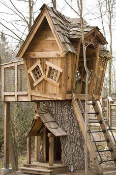 Imagini pentru casute din lemn in copac