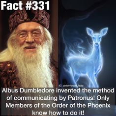 #qotd what is your patronus? • • Tags~ #harry #potter #harrypotter #potterhead #facts #harrypotterfacts #gryffindor #hufflepuff #ravenclaw…