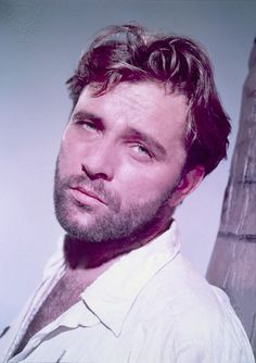 Richard Burton - the absolute best picture ever of him. He just oozes sexiness in every way possible. Sadly I will never get the chance to touch and fondle that awesome beard. Vintage Hollywood, Classic Hollywood, Beautiful Men, Beautiful People, Absolutely Gorgeous, Burton And Taylor, Hollywood Stars, Hollywood Icons, Hollywood Glamour
