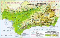 Andalucía está condicionada por el valle del Guadalquivir y por la existencia al norte de Sierra Morena y al sureste las Cordilleras Béticas, donde se alcanzan las mayores alturas en Sierra Nevada, concretamente en el el pico Mulhacén (3.479 m)