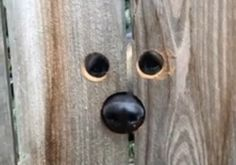 """This woman made her fence more """"dog accessible"""" for her neighbor's sweet German Shepherd! Jennifer Bowman shared this video to Facebook with the caption, """"Got tired of the neighbors German shepherd jumping to peek over the fence so I made her …"""