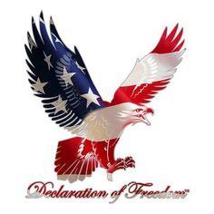 Meet your Posher, Kunle American Flag Eagle, American Pride, I Love America, God Bless America, Patriotic Pictures, Eagle Pictures, Patriotic Quotes, Flying Flag, Military Pins