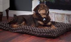 Groupon - PAW Lavish Cushion Pillow Furry Pet Bed. Groupon deal price: $12.99