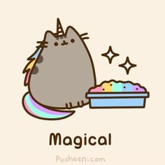 Pusheen the Cat Unicorn who has a magical litter box ( rainbows galore! )