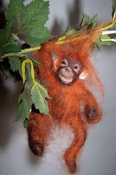 Orangutan Sanctuary,  Malaysia