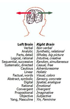 I am soooooooo a right brain; except for the verbal part! Left Brain Right Brain, Brain Gym, Brain Science, Your Brain, Life Science, Computer Science, Coaching, Brain Facts, Anatomy And Physiology
