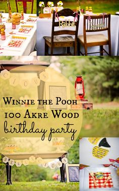 12 Photos From A Winnie the Pooh First Birthday in the 100 Aker Wood
