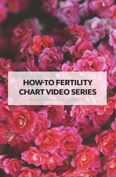Fertility charting is one of the most important tools you have on your natural fertility journey. Following is a series of how-to videos sharing with you how to fertility chart using one of our favorite tools Fertility Friend. #howtofertilitychart #fertilitychart #fertility #infertility #fertilitytips #ttc #naturalfertility #NaturalFertilityInfo #NaturalFertilityShop
