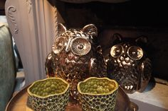 These owls are a right hoot.