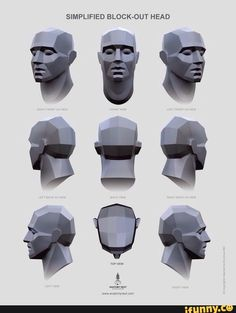 Found on iFunny Head Anatomy, Anatomy Drawing, Anatomy Art, Zbrush Anatomy, Body Drawing, Anatomy Sculpture, Sculpture Art, 3d Modellierung, Planes Of The Face