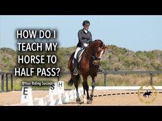 Horse Riding Tips, My Horse, Horse Training, Training Tips, Dressage, Horse Exercises, Academic Art, Today Episode, Tv Episodes