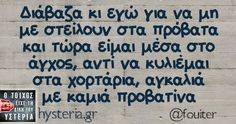 hysteria.gr Ο δρόμος είχε την δίκη του υστερία... Funny Images, Funny Photos, Funny Greek, Funny Statuses, Try Not To Laugh, Greek Quotes, True Words, Sarcasm, Quote Of The Day