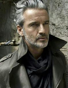 Handsome grey