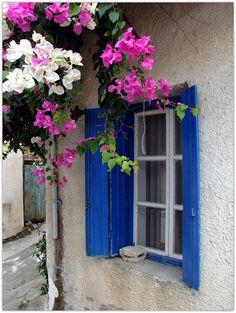 Art Symphony: Flowers in the Window