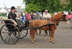 Horse Drawn Vehicle Day