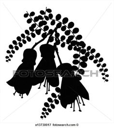 Picture - Black Silhouette of Kowhai Flowers. Fotosearch - Search Stock Photography, Photos, Prints, Images, and Photo Clipart Black Silhouette, Tree Silhouette, Silhouette Design, Fine Art Prints, Framed Prints, Canvas Prints, Photo Clipart, New Zealand Image, Nz Art
