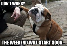 Don't worry, the weekend will start soon.